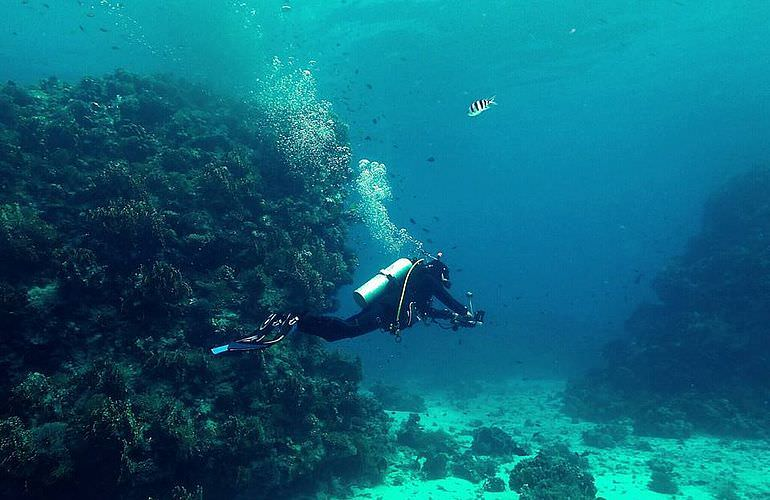 Auffrischungskurs: PADI Scuba Review Programm in Soma Bay